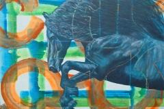 Het Friese paard in beeld (3)