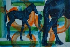 Het Friese paard in beeld (6)